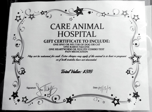 Mother S Day Fundraisers For Dog Rescues